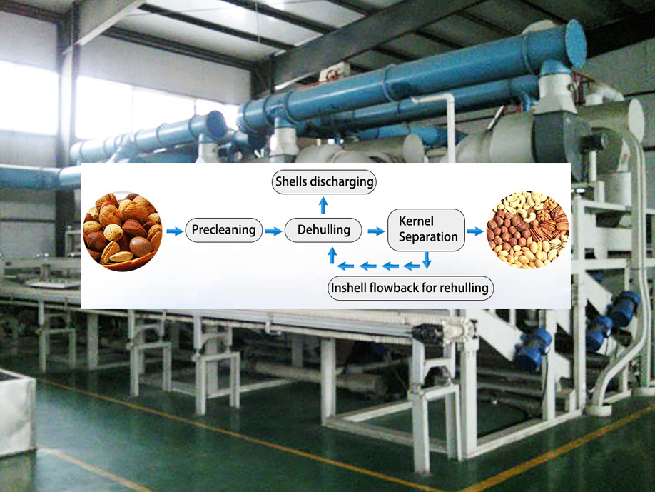 Blanched peanut machine