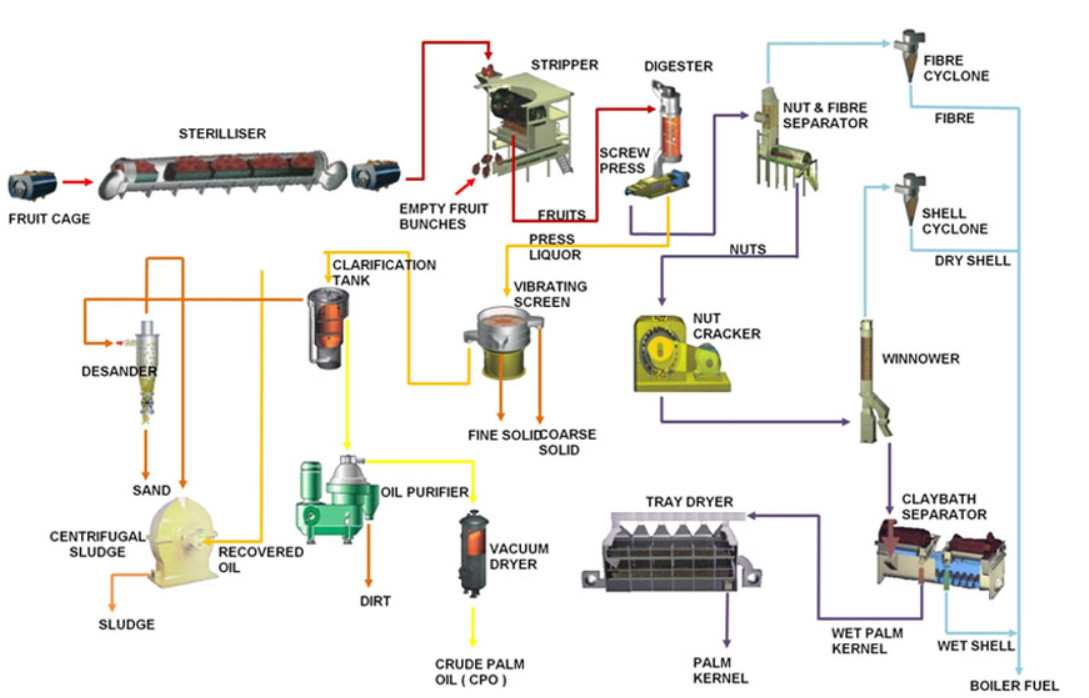 Professional design of palm oil refining process