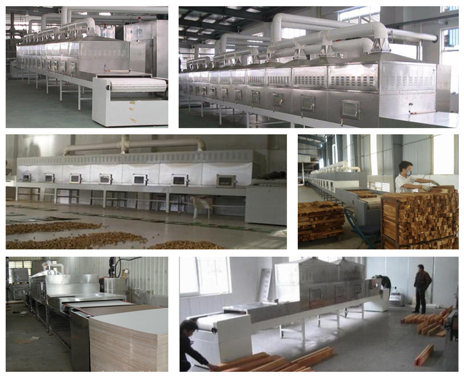 Continous Microwave Food Drying Equipment/Vegetable Drying Machine/Dryer