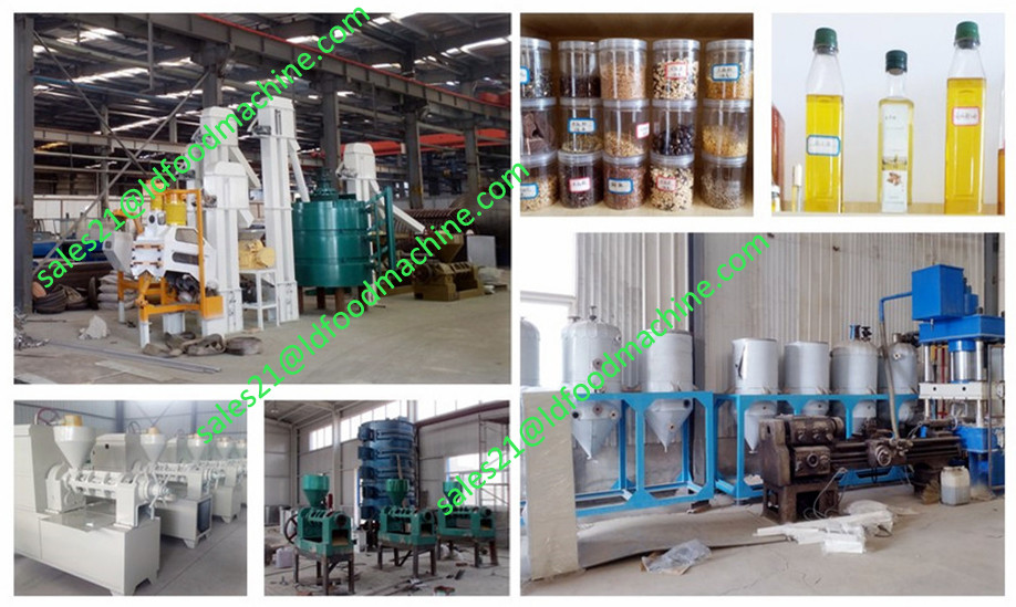 low cost 100 ton per day maize flour milling machinery for kenya