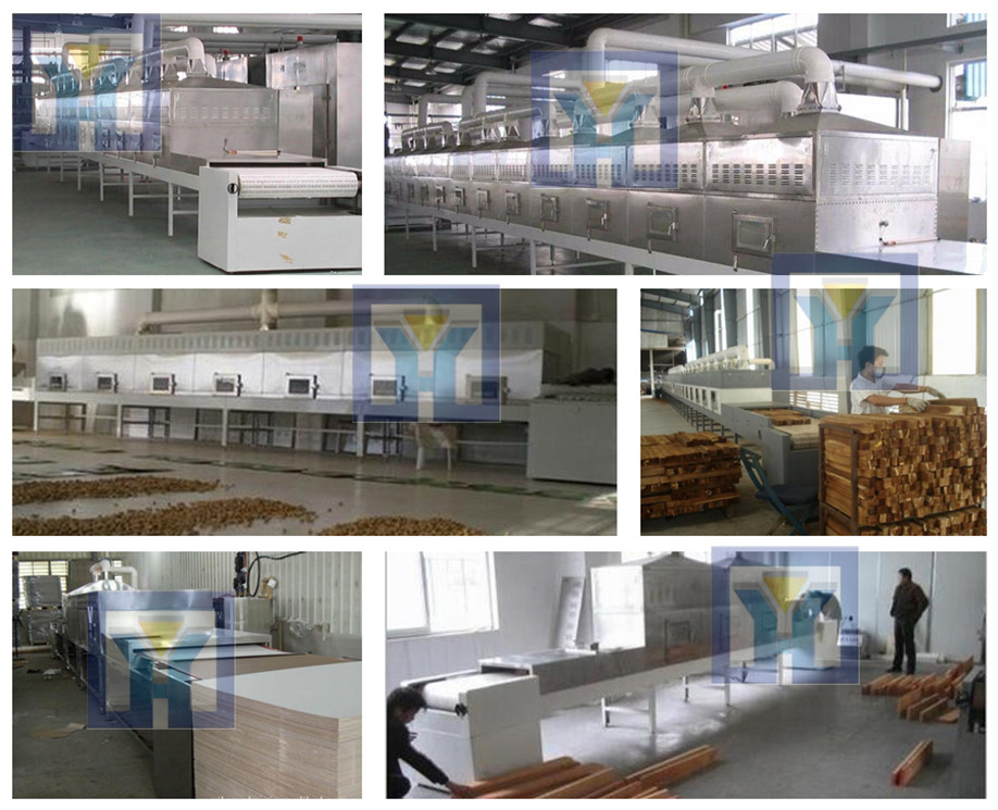 Advanced microwave chestnut sterilization machine