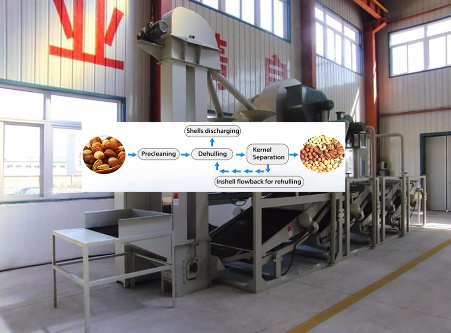dry/roasted peanut skin peeling machine