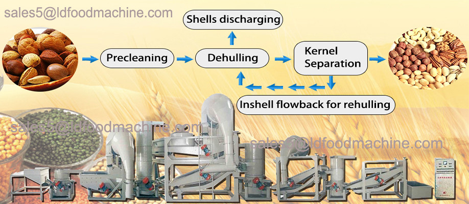 High performance vegetable oil deodorizing machine