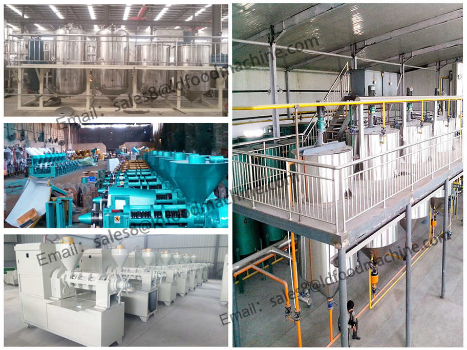 Manufacturer of rice bran oil producing plant 30-300TPD