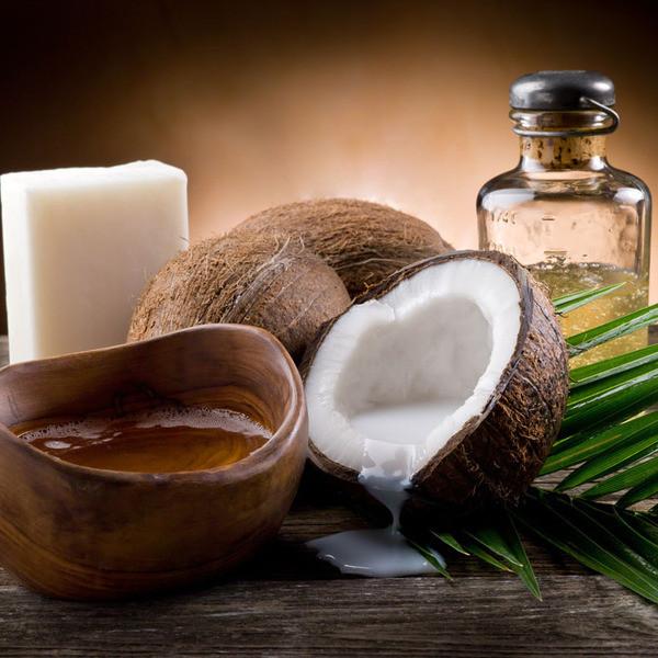 Coconut Oil Plant