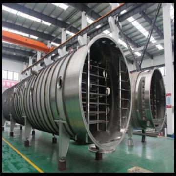 Belt Type Mulit-Function Automation Vacuum Lyophilized Food Equipment