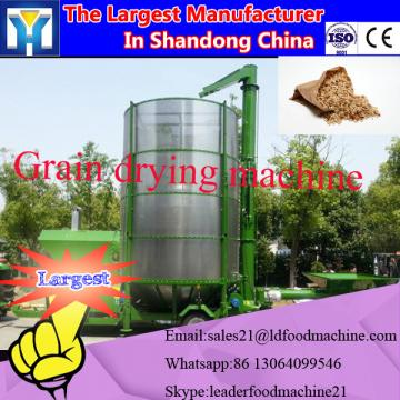 Industrial conveyor microwave dryer for drying green leaves