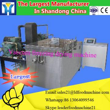 Household Stainless Steel Jack Fruit Dryer/liquid Freeze Drying Machine/dehydrator Machine/0086-13283896221