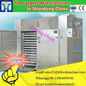Microwave vacuum dryer for fruit and vegetable