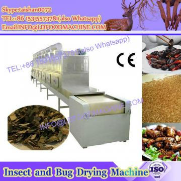 Vegetable drying processing line using Cabbage cleaner/broccoli washer/eggplant washing machine