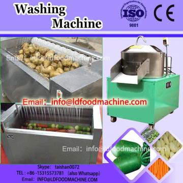 ginger washing machinery