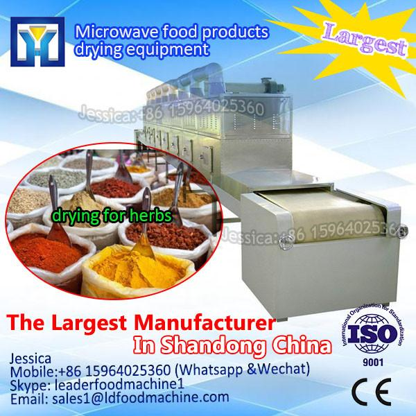 Hot selling in Poland advanced technology microwave tunnel dryer