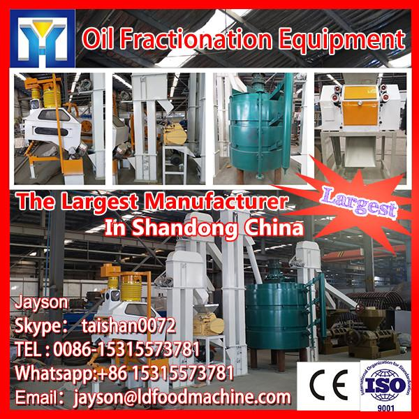 30-600T/D palm oil processing machine for oil refining with fractionation