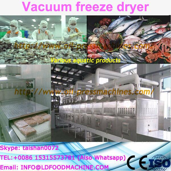 freeze dried fruit machinery productive freeze dryer