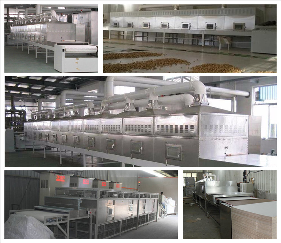 good quality zeolite support tunnel microwave drying sterilization machine
