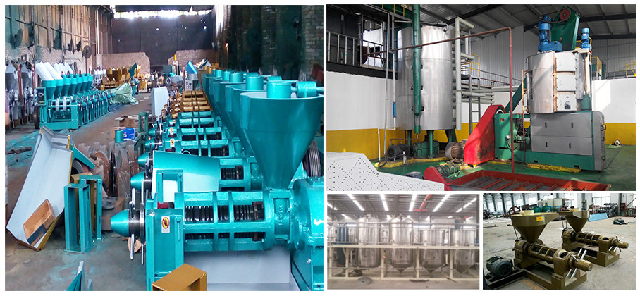 soybean oil making machine , coconut oil making machine ,peanut oil press machine have best price