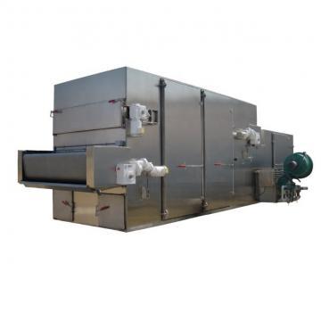Industrial mesh belt microwave dryer with sterilization for Ginseng honeysuckle Meat preserved fruit