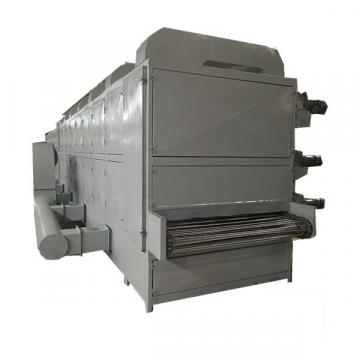 High capacity factory sale price continuous dw mesh belt dryer for chili pepper fresh ginger food