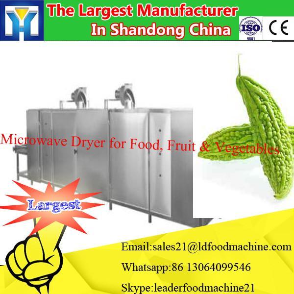 Professional microwave Alpine maojian tea: drying machine for sell